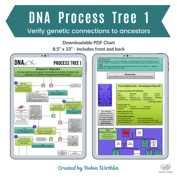 DNA Process Tree Chart 1 Product image (3)