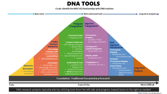 DNA Tools Bell Curve with details