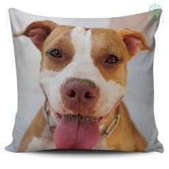 Pitbull Pillow %tag familyloves.com