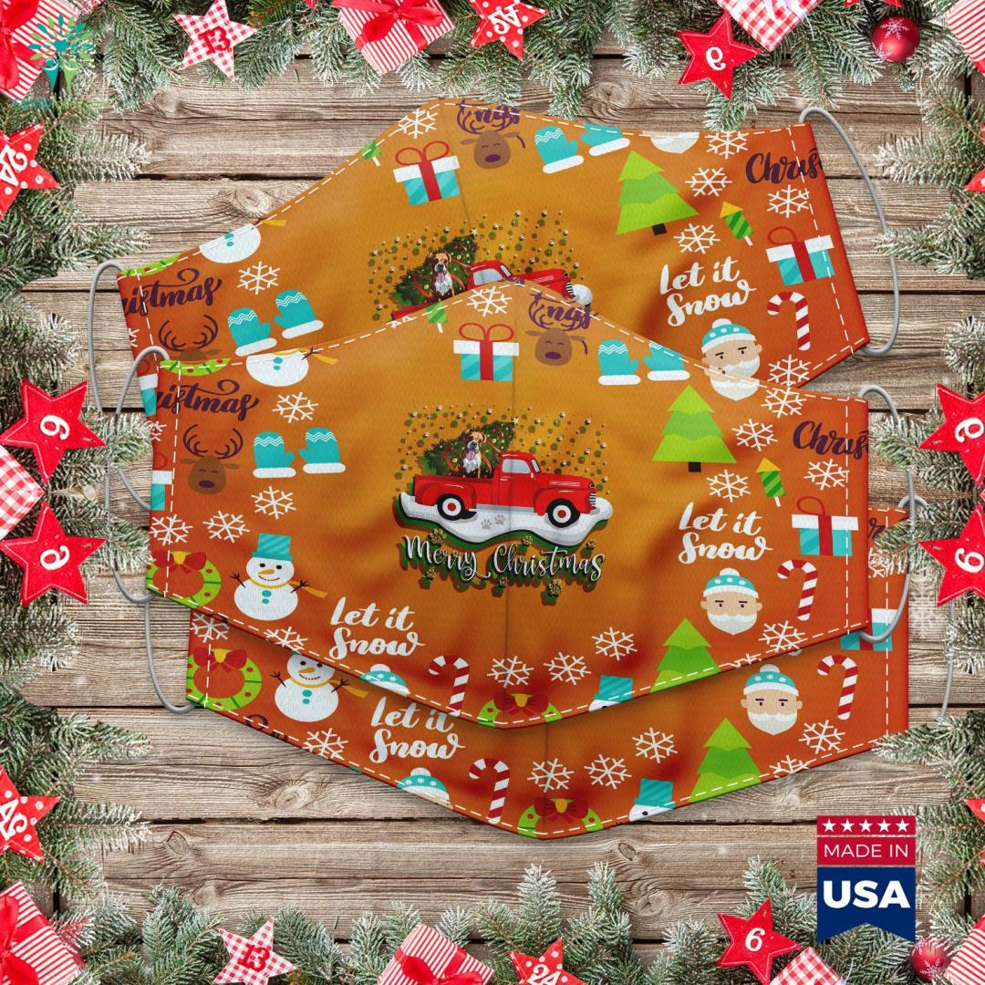 Sally Nightmare Before Christmas Makeup Red Truck Merry Christmas Tree Boxer Dog Christmas Cloth Face Mask Gift %tag familyloves.com