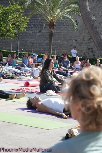 Palma goes Yoga (12 of 18)