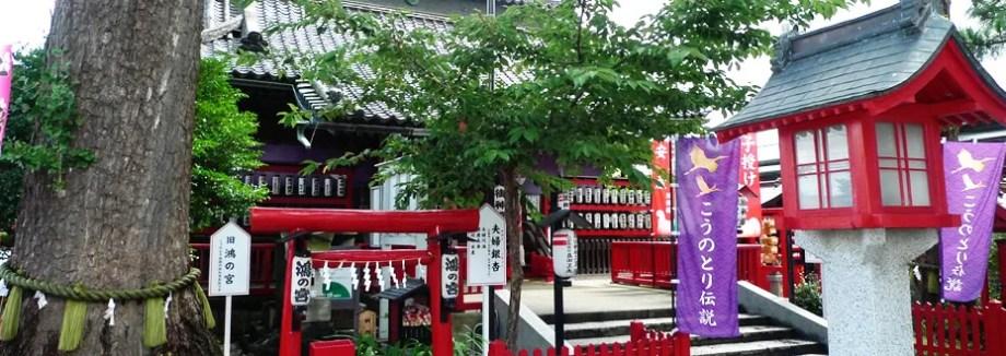 【関東 埼玉県】鴻神社(こうじんじゃ)