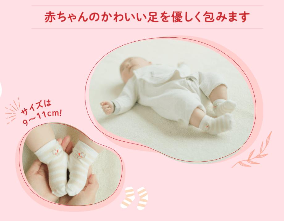 ベビーソックス hakka baby こどもちゃれんじ②