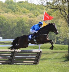 Horse jumping fence