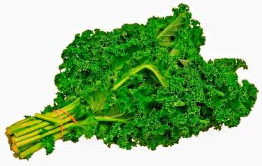 Kale healthy food