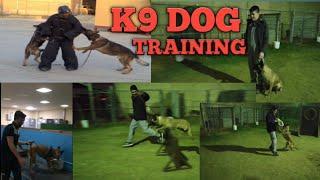 K9 DOG TRAINING - K9 DOG TRAINING