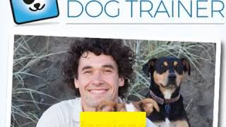 all about doggy dan and the online dog training course - all about doggy dan and the online dog training course