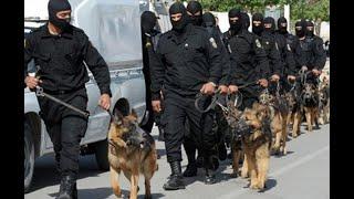 American Police Dog Training - تدريب الكلاب البوليسية الأمريكية American Police Dog Training