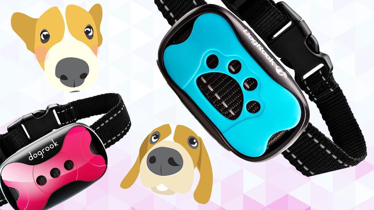 DogRook Rechargeable Dog Training Bark Collar Review Digital David - DogRook Rechargeable Dog Training Bark Collar Review // Digital David
