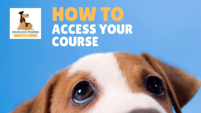 How to Access Your Online Dog Training Course -