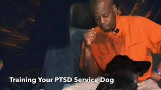 PTSD Service Dog Training - PTSD Service Dog Training