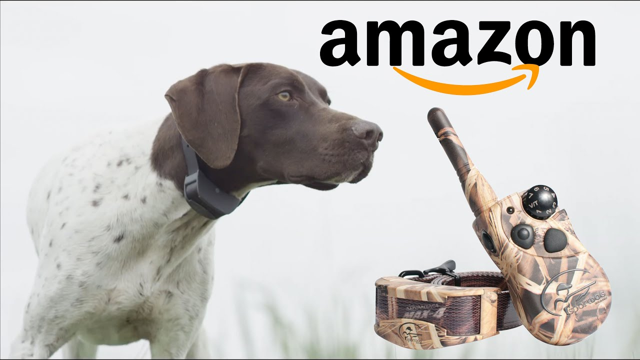 TOP 5 BEST Hunting DOG TRAINING E COLLAR on Amazon 2020 - TOP 5 BEST Hunting DOG TRAINING E-COLLAR on Amazon 2020