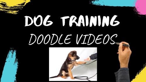 Dog Training Videos Dog Training Doodle Videos - Dog Training Videos - Dog Training Doodle Videos