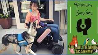Episode 133 Veronica Sanchez Service dog training - [Episode 133] - Veronica Sanchez; Service dog training