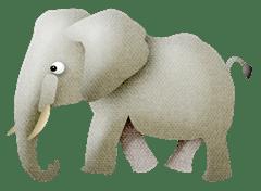 Paci_Baby_Elephant