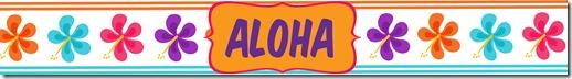 waterbottle aloha2
