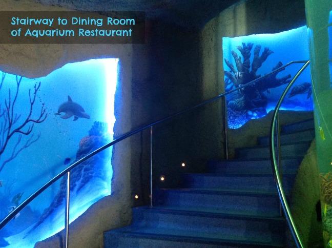 aquarium_stairway