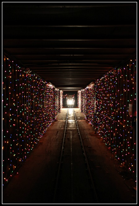 train in the tunnel of lights - Irvine Christmas Train