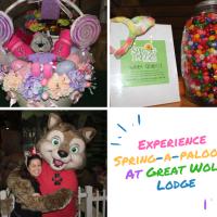 "Celebrate the Season at ""Spring-a-Palooza"" at Great Wolf Lodge"
