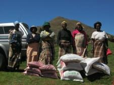 Verteilen von Saatgut und Training der Bauern in Farming Gods Way ist ein Teil des Missionsprogramms. (Foto von 2014)