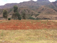 Die Felder sehen aus wie im Winter wo es normal ist, dass es nicht regent. Aber im Sommer sollte es grün und fruchtbar aussehen.