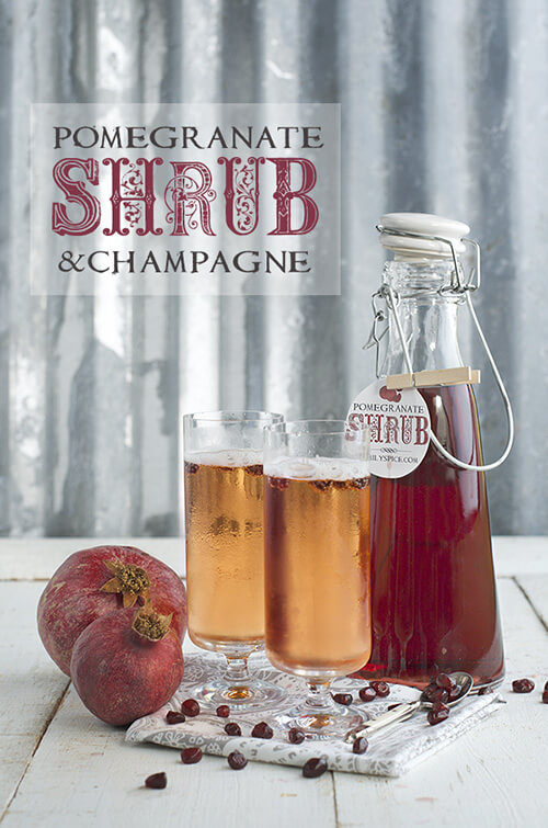Pomegranate Shrub and Champagne by FamilySpice.com