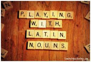Playing with Latin Nouns