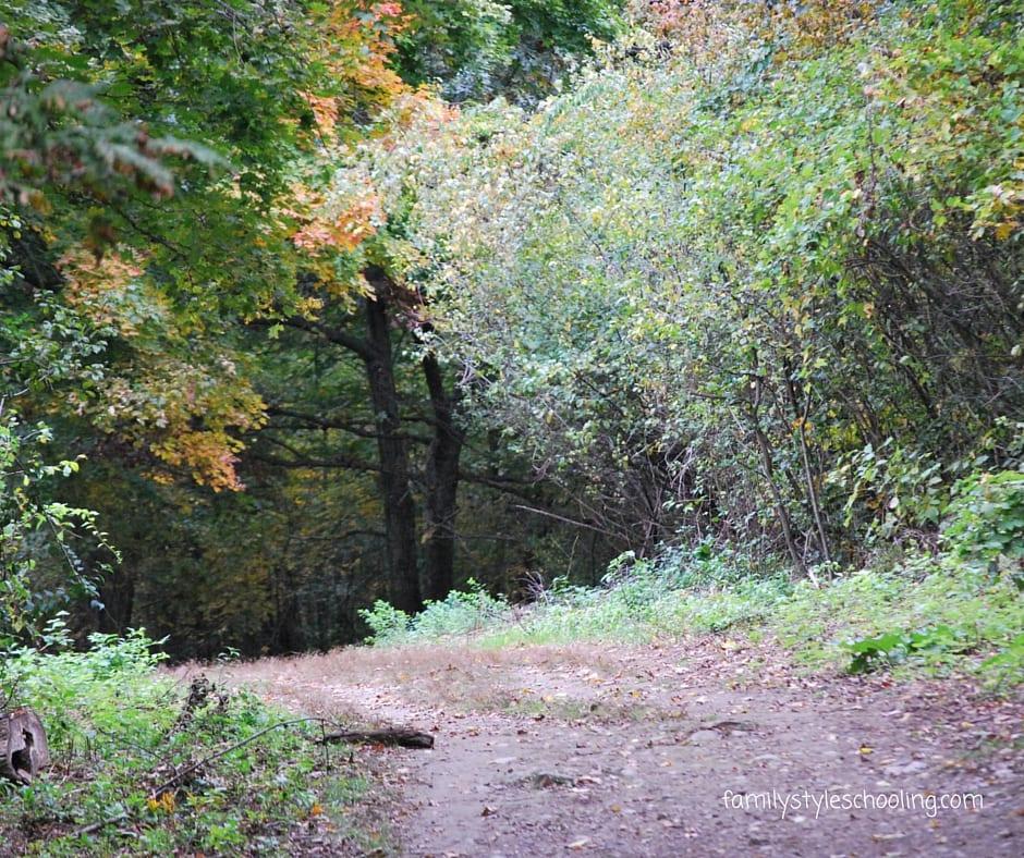 Spot Pond Stoneham, MA
