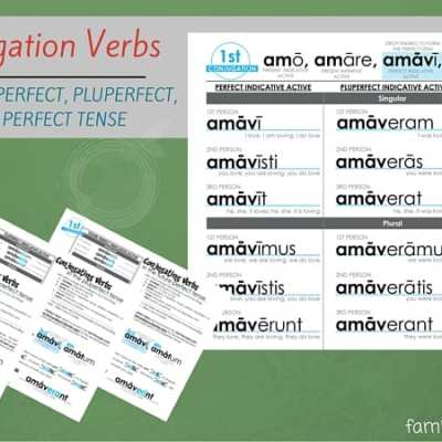 Latin Conjugations Perfect Stem Worksheets