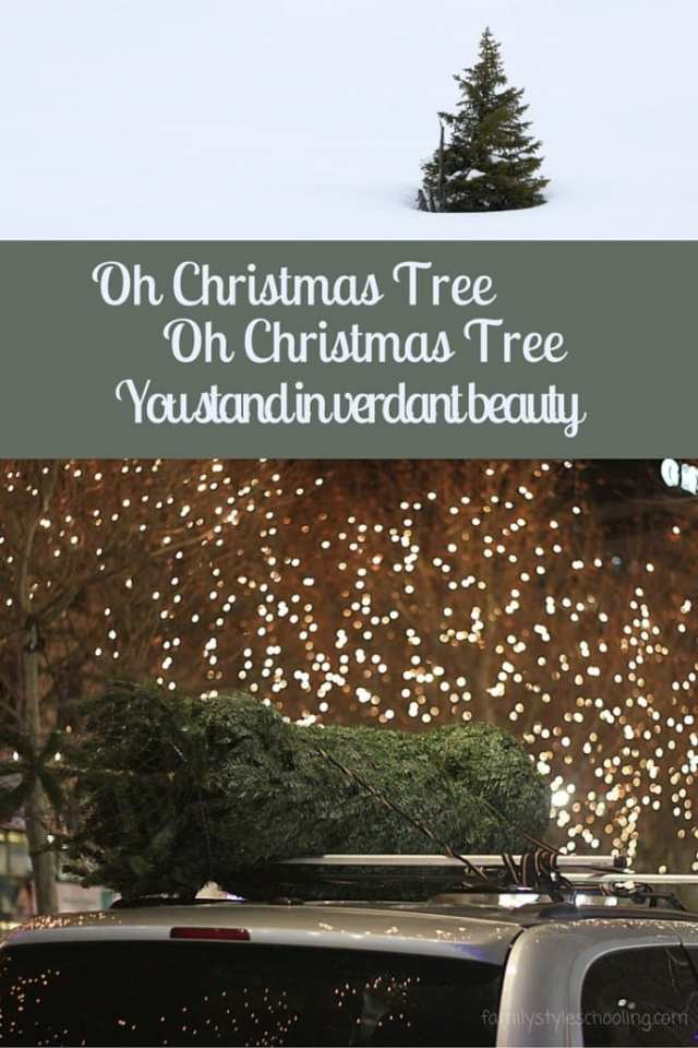 """While contemplating the lyrics of a classic Christmas carol, the ideas of a Christmas tree being a """"verdant beauty"""" sparked a great conversation."""