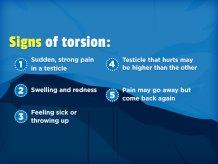 Risultati immagini per testicular torsion