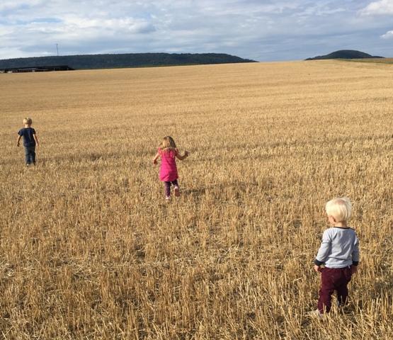 Hijos en el campo