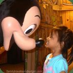 Disney's New Trip Planner