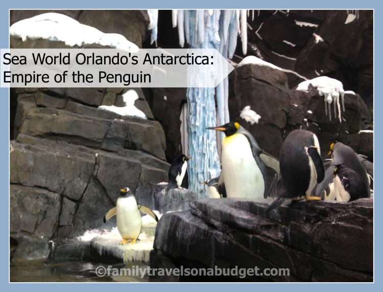 Sea World's Antarctica: Empire of the Penguin Review
