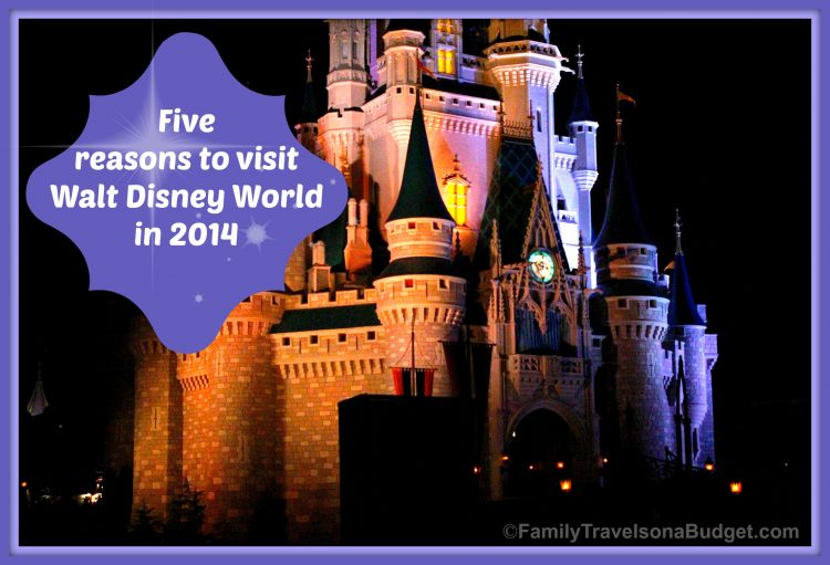 5 Reasons to Visit #WDW in 2014