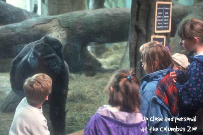Roar and Explore Columbus Zoo