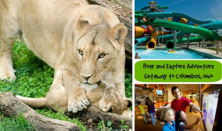 Roar and Explore Package Columbus Ohio