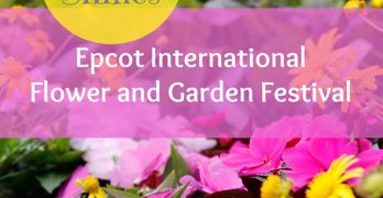 Spring Shines at Epcot International Flower and Garden Festival