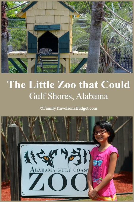 The Alabama Gulf Coast Zoo, aka the Little Zoo that Could, makes a great family outing in Gulf Shores. Learn more at http://familytravelsonabudget.com/attractions/little-zoo-that-could/ ‎