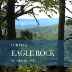 Hiking the Tuscarora Trail to Eagle Rock Overlook