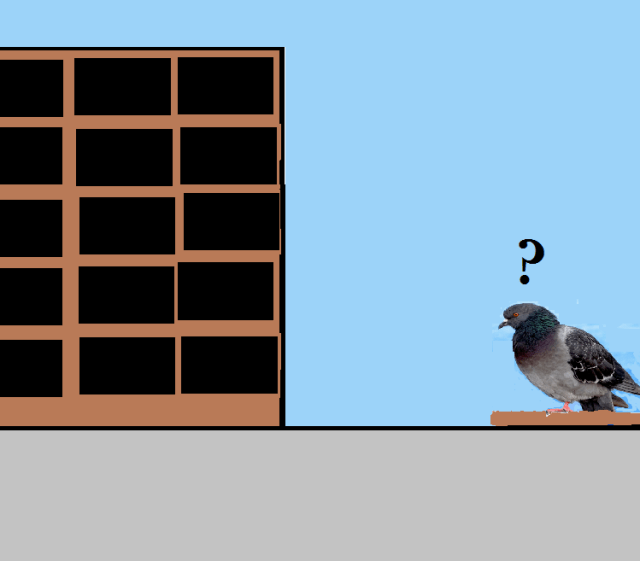 Pigeon at pigeonhole for blog