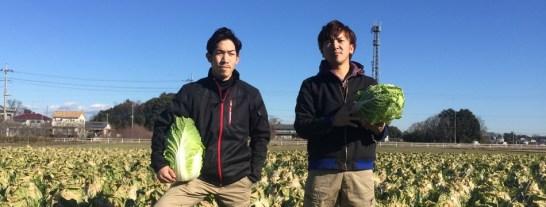 松島兄弟の野菜直売所(白菜など)