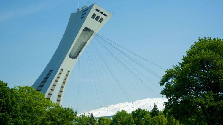 la torre dello Stadio Olimpico vista dal Giardino Botanico