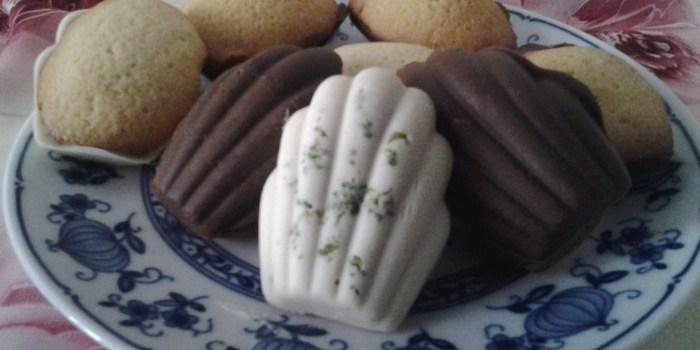 madeleines coque chocolat blanc citron et au lait