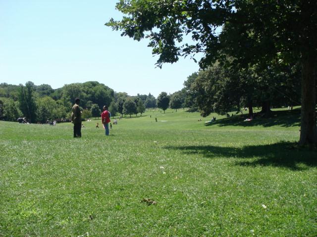 Long Meadow2