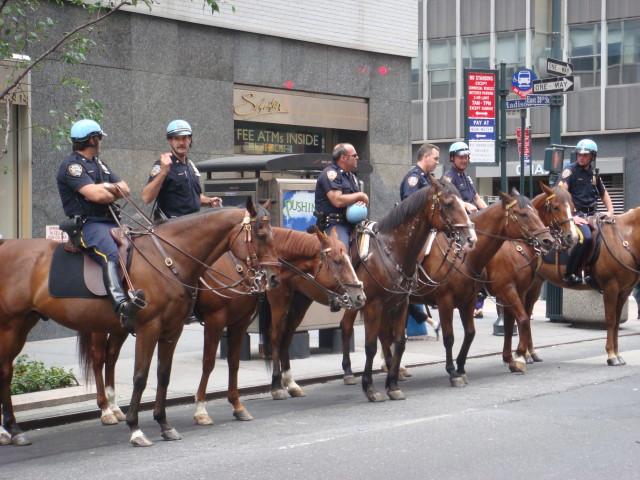 Cops andhorses
