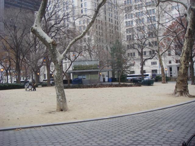 20071222-shake-shack-deserted-in-winter.jpg