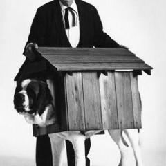 Buster Keaton and dog