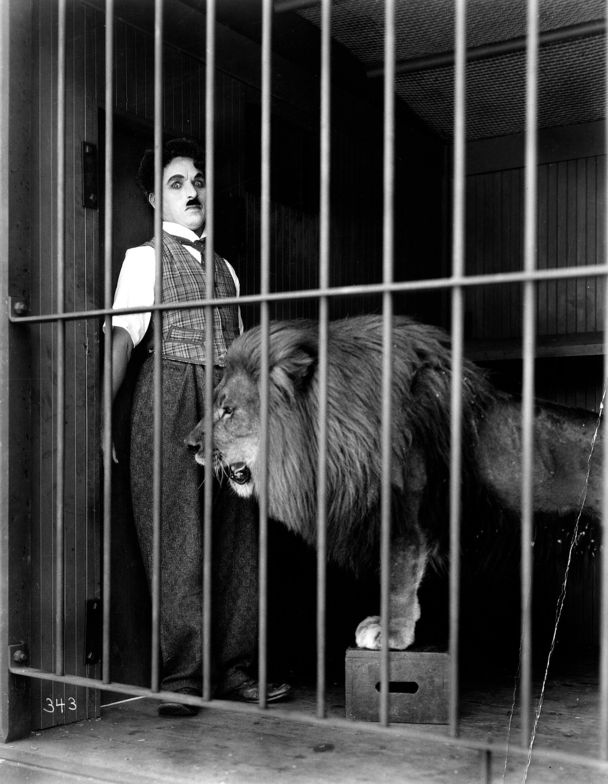 """Charlie Chaplin in """"The Circus"""" - United Artists Picture - Lion in cage startles Charlie Chaplin"""