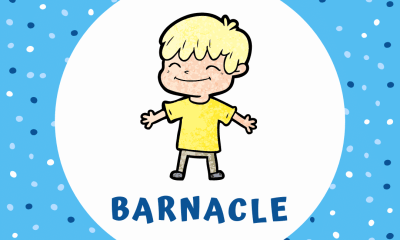 Lil Barnacle Biography